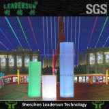 De LEIDENE Pijler schouwt In het groot ldx-X02