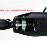リチウム電池が付いている350のWのFoldable電気スクーター