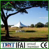 Openlucht Tent 6m van de Luifel van Gazebo van de Tuin van de Pagode van het Frame van het Aluminium