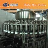Máquina del relleno en caliente del jugo de la botella de cristal