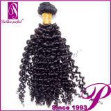 Onde bouclée crépue d'achat d'armure indienne non transformée directe de cheveux