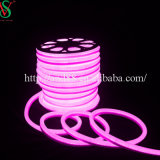 LED Rope Neon Tube con Different Tube Size