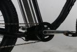 750W를 가진 고성능 산 먼지 E 자전거