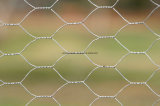 電流を通されたまたはPVC上塗を施してある六角形ワイヤー網