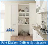 Cucina moderna dell'impiallacciatura del Combine e della mobilia della lacca