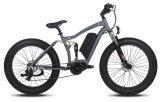 Moteur électrique du vélo 350W de MI d'entraînement de plage pneu électrique de vélo gros