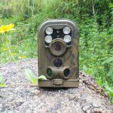 Pequeña cámara infrarroja del rastro con la visión nocturna para la vigilancia y la caza animales de la fauna