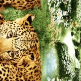 kleiner Leopard Pigment&Disperse des Dschungel-100%Polyester druckte Gewebe für Bettwäsche-Set