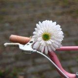 Blumen-Fahrrad Bell (25-1A24AH)