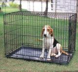 Gabbia della gabbia, della gabbia del cane, del gatto e del coniglio, Camera di cane della gabbia di uccello, serie dell'epossidico della gabbia del cane