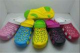 L'ultimo giardino di EVA di svago dei bambini calza i sandali comodi (FF509-1)