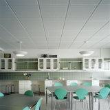 Imitation perforée de plafond d'enduit de roulis, plafond suspendu
