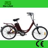 2017 bici elettrica del nuovo della fabbrica del classico 24V 250W motore poco costoso diretto all'ingrosso del mozzo