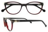 여자를 위한 새로운 도착 Eyewear 나비 모양 안경알 프레임
