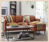 Nordisches Wohnzimmer-Möbel-Leder-Sofa