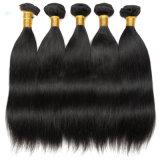 専門の人間の毛髪の製造業者の販売の100%年のバージンの人間の毛髪