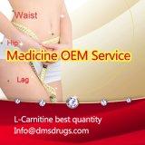 Gewicht-Verlust-Karosserie, die L-Carnitin (Carnitin) abnimmt Fromulation