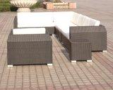 Le sofa de rotin a placé/modèles réglés de sofa 2013/extérieur réglé de sofa (SC-B6018-B)