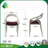Heißes Verkaufs-Hotel, das Stuhl-Plastikstuhl für Verkauf (ZSC-25, speist)