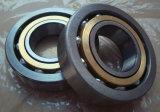 Doble-Fila angular del rodamiento de bolitas del contacto de Ezo 3218