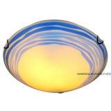 Plafond van de Lamp van het Plafond van het glas het Lichte Binnen Decoratieve