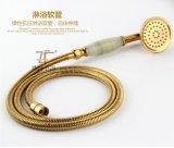 Jeu en laiton de douche de modèle de jade simple neuf du traitement Zf-709