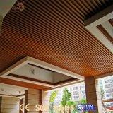 Diseños incombustibles del techo del PVC de la instalación rápida del precio bajo para la decoración casera
