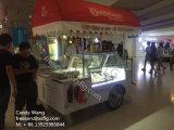판매를 위한 아이스 캔디 손수레/지팡이 트롤리/아이스크림 냉장고 /Showcase