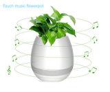 Musique d'usine de contact jouant le Flowerpot rond d'usine d'éclairage LED sec avec Bluetooth
