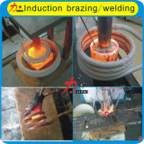 Aftersale presta serviços de manutenção à máquina de aquecimento da indução para tipos dos metais