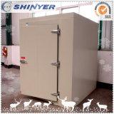 Sitio de conservación en cámara frigorífica de Shinyer para la venta