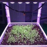 O diodo emissor de luz novo do projeto da patente cresce a barra clara para plantas