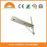 (HM-0015Q) 1개에서 모두 또는 운동 측정기를 가진 통합 15W 태양 LED 가로등