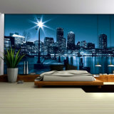 Верхнее популярное прочное водоустойчивое печатание цифров настенных росписей стены