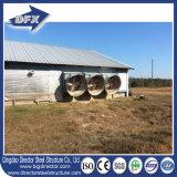 Structure en acier Panneau sandwich en fibre de verre Volaille Poulet Farm House