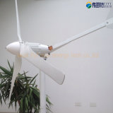 1kw de Macht van de wind Genenerator 48V voor het Gebruik van het Huis