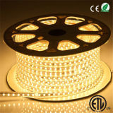 Alta luz de tira impermeable de voltio 120V/220V SMD5050 LED 3000k/6000k