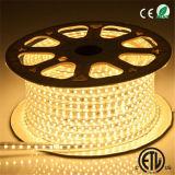 Alto indicatore luminoso di striscia impermeabile di volt 120V/220V SMD5050 LED 3000k/6000k