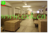 Ctcp pour Amsky Basysprint