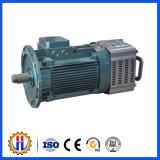 Moteur d'élévateur de construction utilisé pour l'élévateur, réducteur, moteur électrique