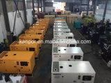 250kw elektrische Generator met Ricardo Kofo Engine