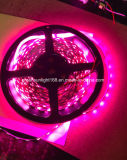 Precisa de luz LED Strip Light Room