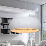 Zhonshan Zubehör-modernes hängendes Innenlicht für Dekoration