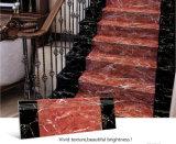 Новые плитки Прибытие Шаг для лестниц завода