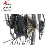 250W 8funブラシレスモーター山の電気土のバイク(JSL037G-6)