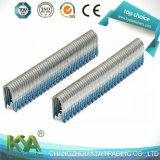 Galvanisierte pneumatische Heftklammern (BCS31P) als Schreiner