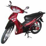 Vélo électrique (ZXDM004)