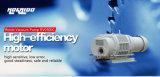 태양 산업 약실에 의하여 사용되는 루트 진공 펌프 (RV0300C)