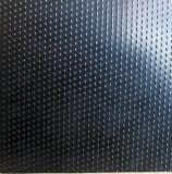 PE het Blad van Geomembrane