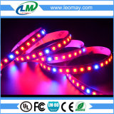 La pianta coltiva la striscia dell'indicatore luminoso del nastro LED di SMD2835 660nm/450nm/470nm LED